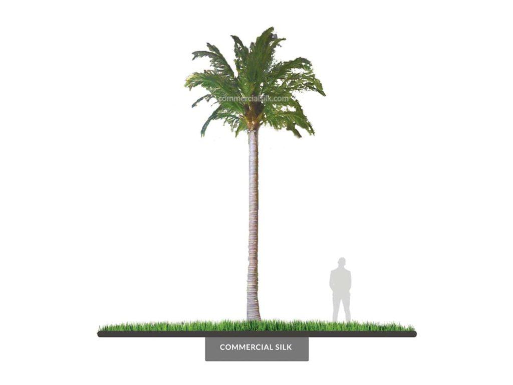 Coconut Palm Tree, 22' ID# 14786