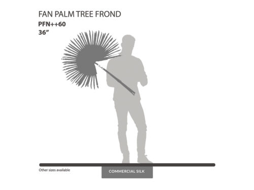 Fan Palm Frond ID# PFN++60