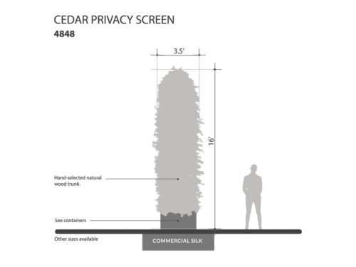 Cedar Column, Privacy Column ID# 4848