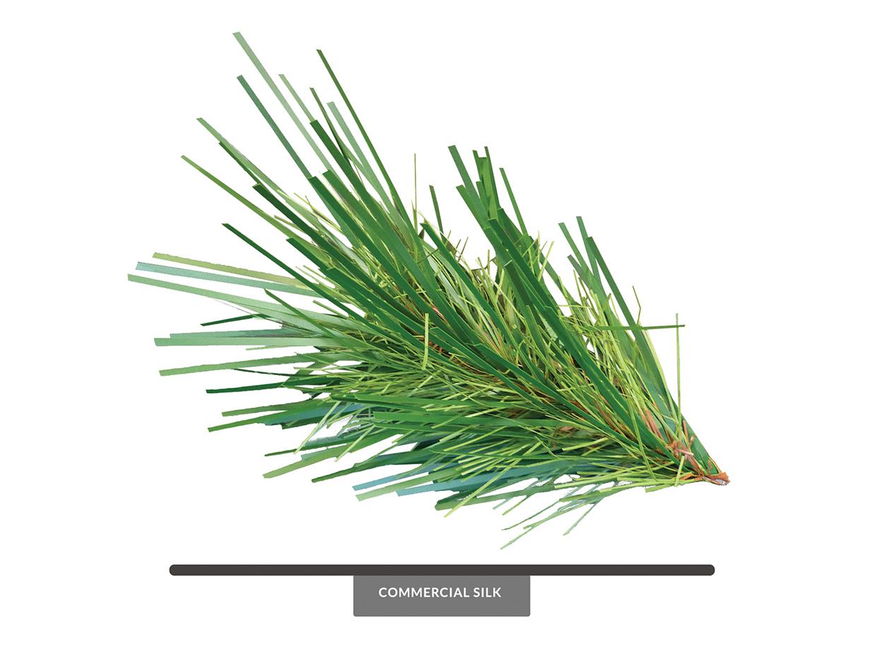 Cell Tower Pine Spray ID# PCT+12