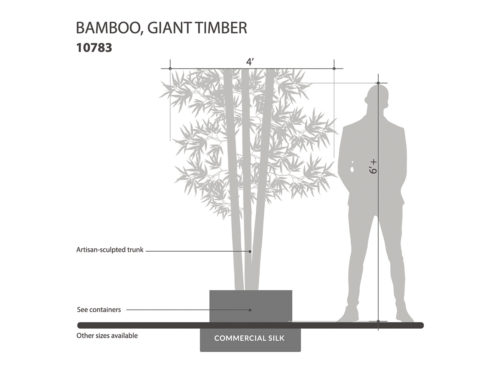 Timber Bamboo Canes, Giant ID# 10783