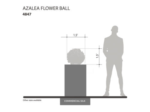 Azalea Flower Ball Plant ID# 4847