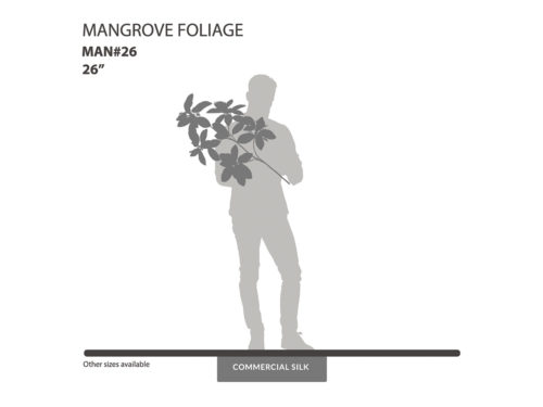 Mangrove Spray ID# MAN#26