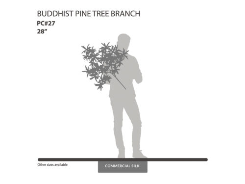 Buddhist Pine Spray ID# PC#27