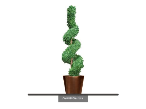 Trimmed Spiral Topiary ID# BOXSF96