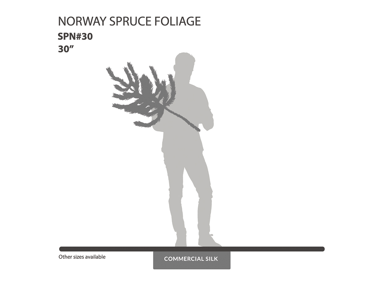 Norway Spruce Spray ID# SPN#30