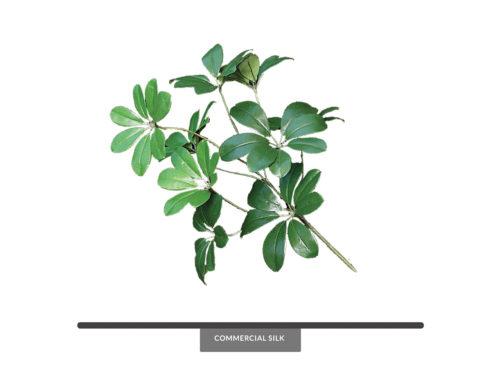 Arboricola Artificial Foliage ID# ARB#22
