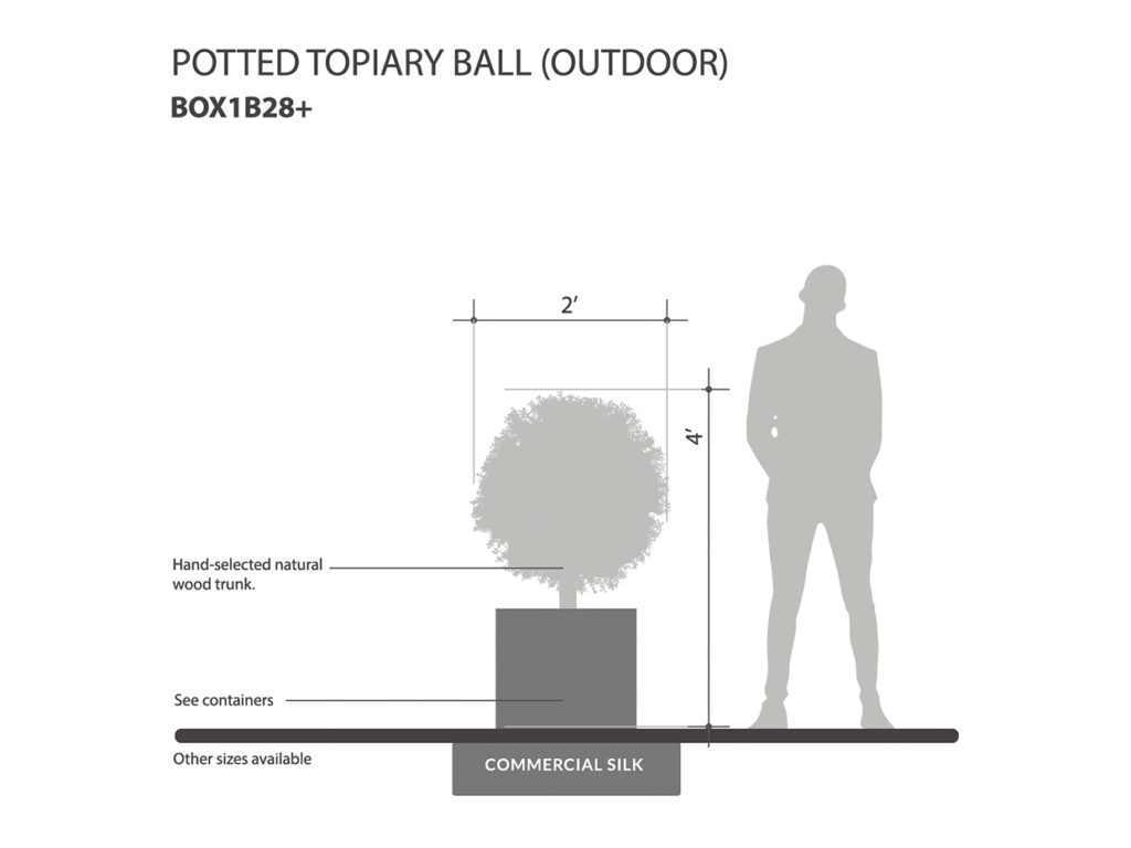 Outdoor Potted Topiary Balls ID# BOX1B28+