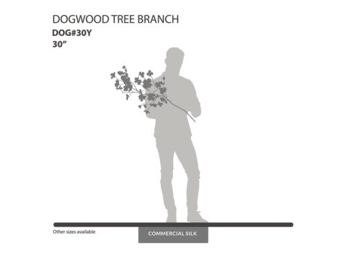 Dogwood Spray, Flowering ID# DOG#30Y