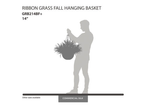 Ribbon Grass Fall Hanging Basket ID# GRB214BF+