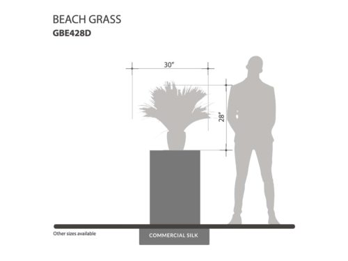 Fake Beach Grass ID# GBE428D