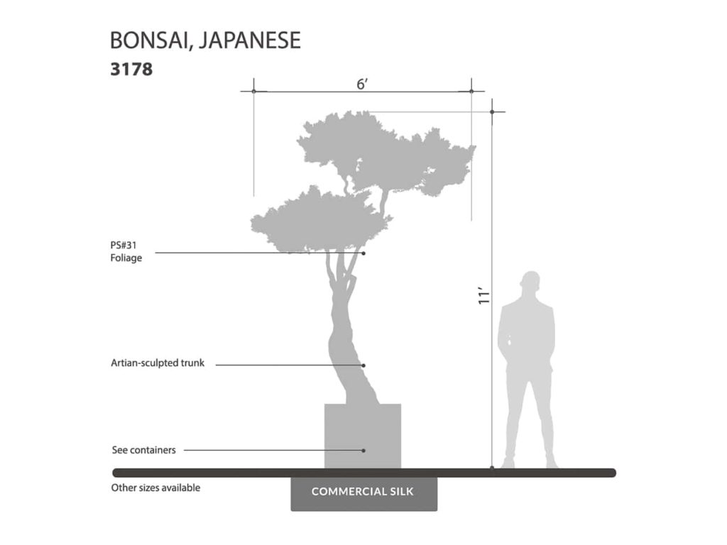 Japanese Bonsai Tree ID# 3178