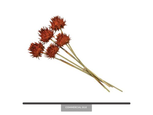 Natural Dried Flower Decor