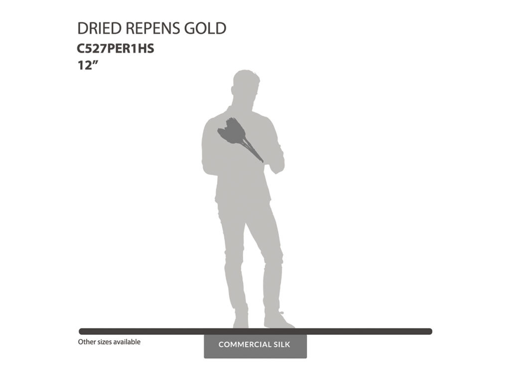 Dried Repens Gold