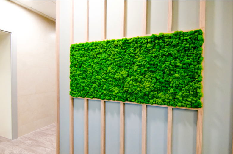 Moss Walls Bring The Outside In