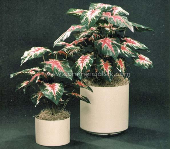 faux Caladium Plant